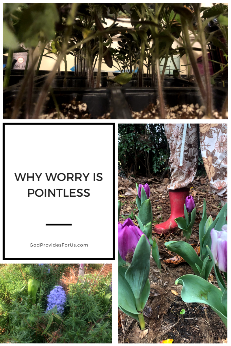 Why Worry is Pointless